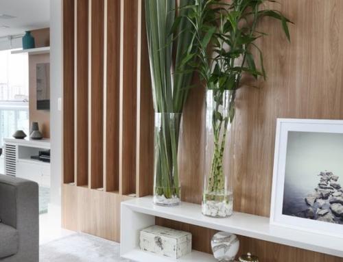 Natureza dentro de casa